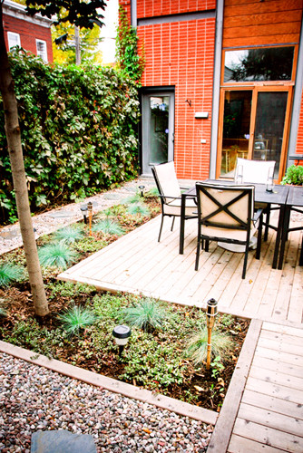 Urban - court garden off the beaten track contemporary-landscape