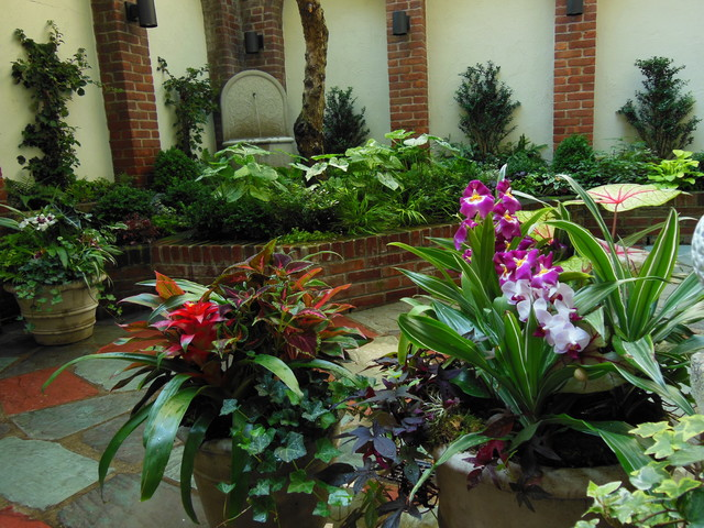 Urban tropical garden for Tropical courtyard garden design