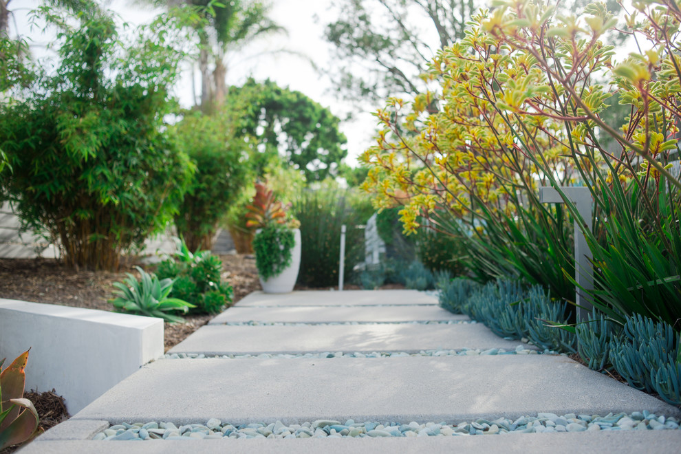 Design ideas for a large contemporary drought-tolerant and full sun backyard garden path in San Diego.