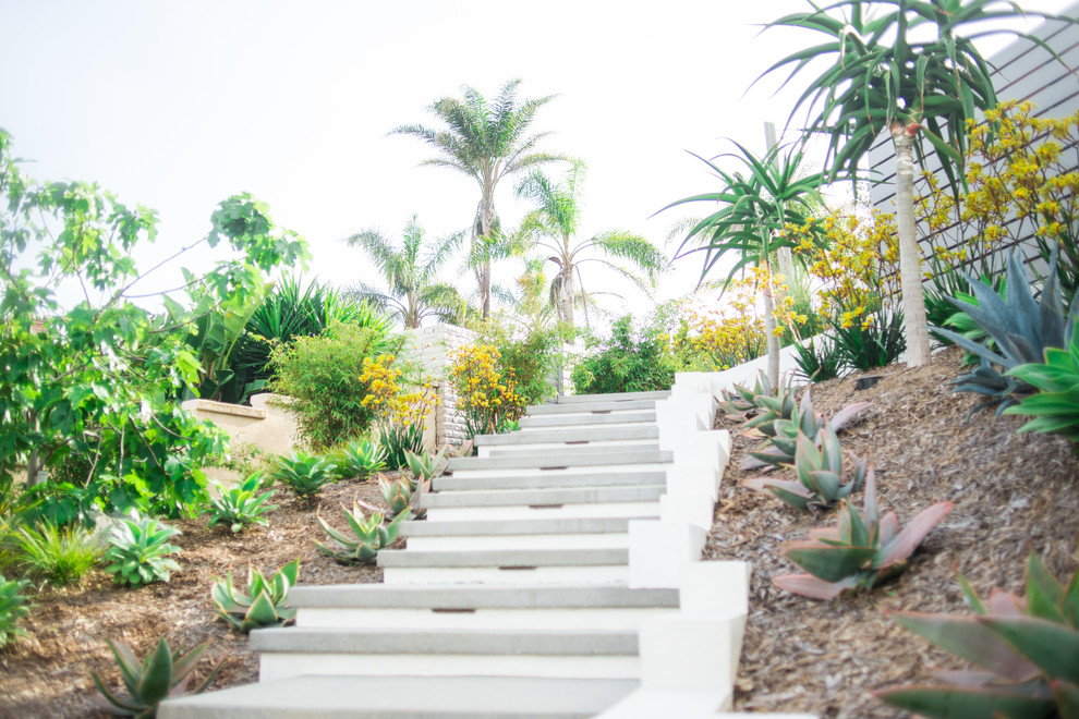 Inspiration for a large contemporary drought-tolerant and full sun backyard garden path in San Diego.