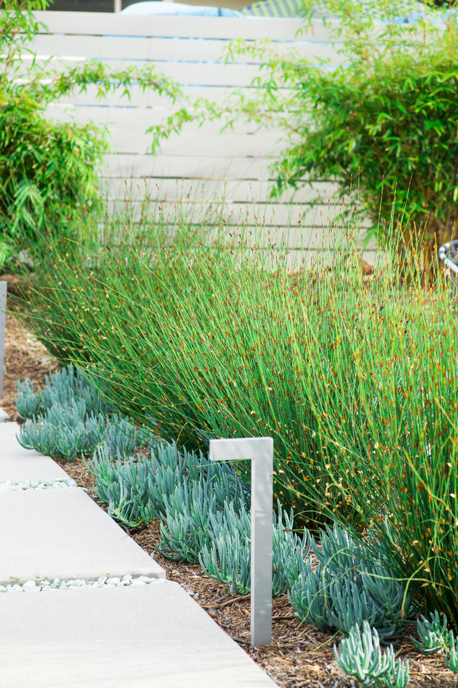 This is an example of a large contemporary drought-tolerant and full sun backyard concrete paver garden path in San Diego.