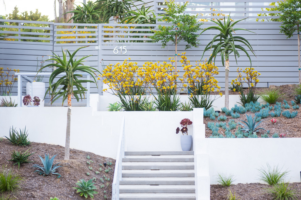 Inspiration for a large contemporary drought-tolerant and full sun front yard garden path in San Diego.