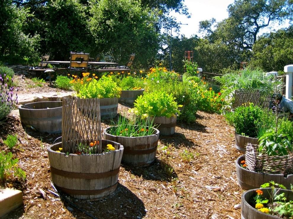 Design ideas for a rustic backyard mulch landscaping in San Luis Obispo.