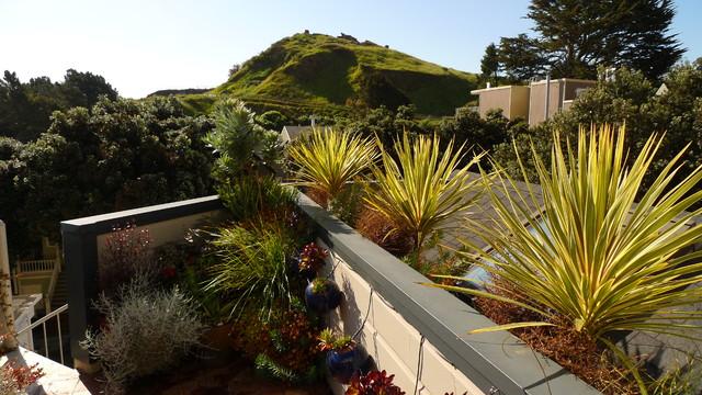 Various gardens in san Francisco contemporary-landscape