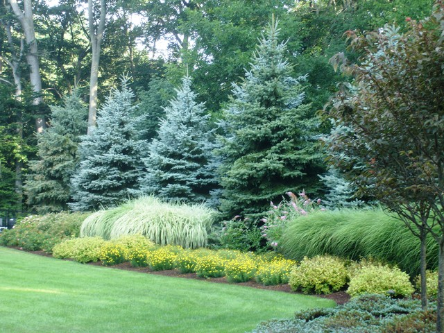 Landscaping With Evergreens Pictures : Various plantings eclectic landscape new york by