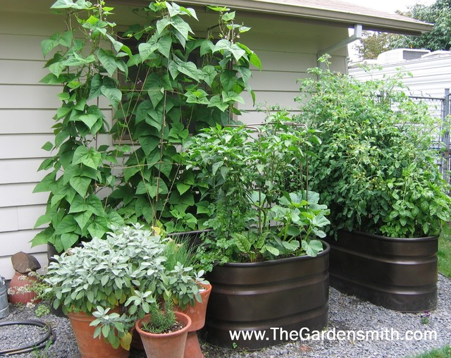 Vegetable Garden in Containers eclectic-landscape