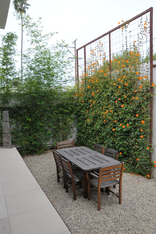 If you like things to be a bit more verdant, you can go with a living screen option. This idea is a simple wooden frame with a wire grid for vines to climb. It may take a while for this wall to build itself, but with the new life brought your yard, the wait is well worth it.