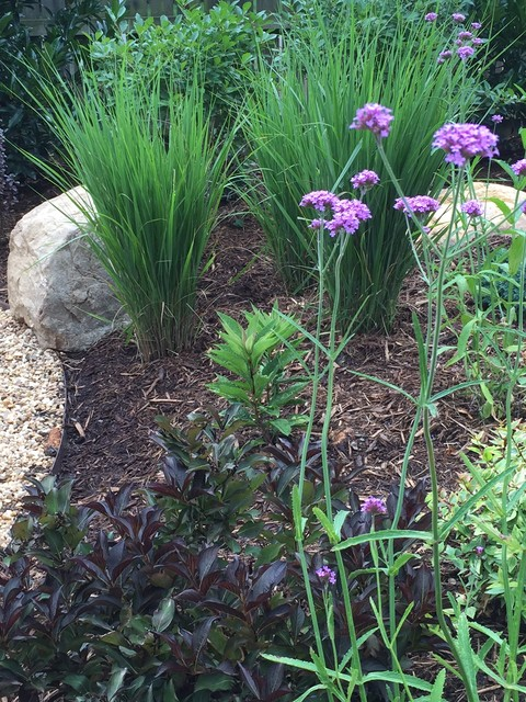 Design ideas for a craftsman full sun landscaping in Charlotte.