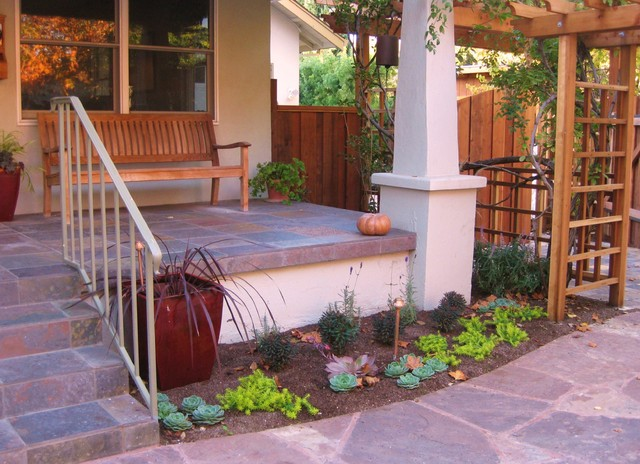 Very drought-tolerant, low maintenance, and year-round beautiful garden mediterranean landscape
