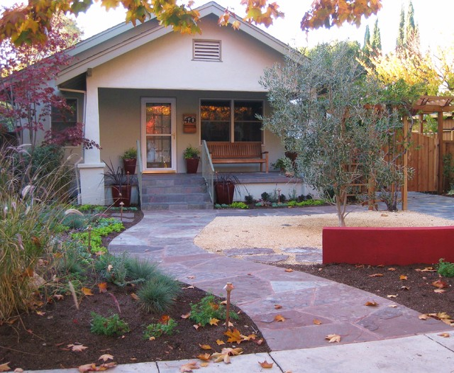 Very drought tolerant low maintenance and year round for No maintenance front yard