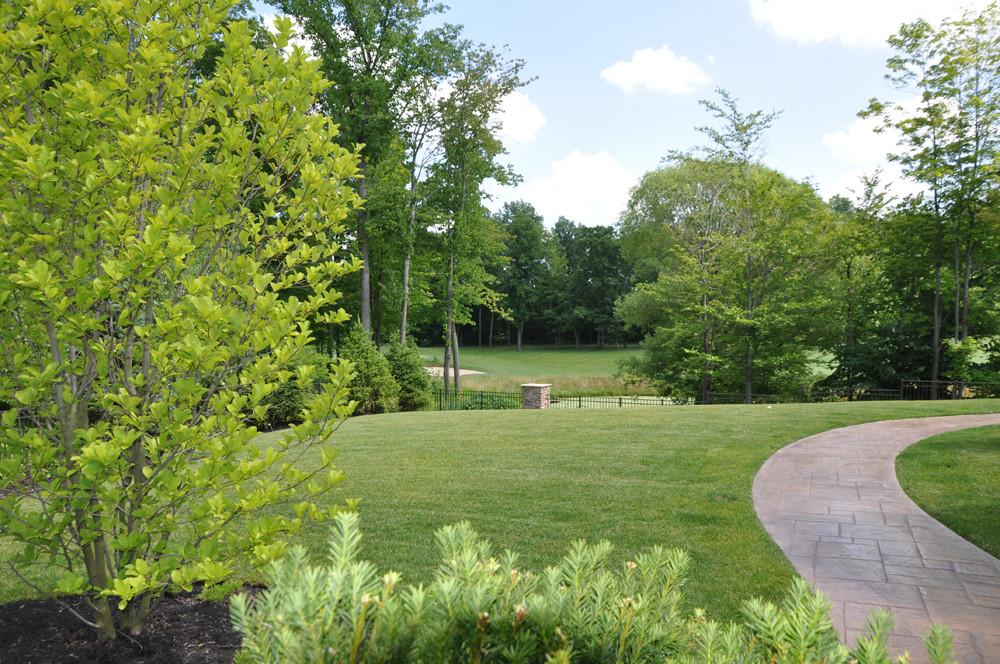 View into Backyard