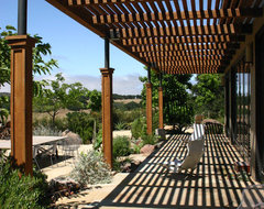 William Joyce Design Southern California Vineyard contemporary-patio