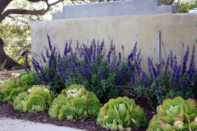 Vineyard Residencecontemporary Landscape Santa Barbara