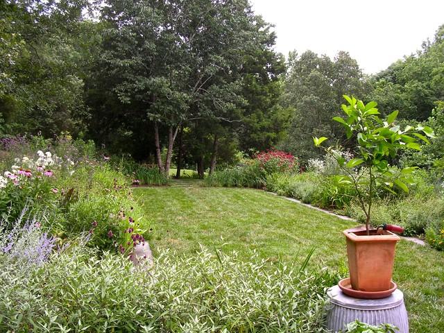 Virginia Countryside Cottage farmhouse-landscape