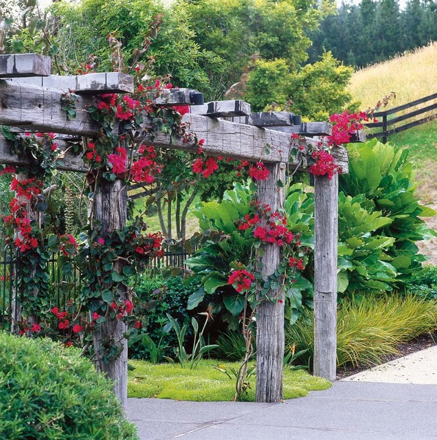 Waikanae rural garden contemporary landscape for Houzz landscape architects