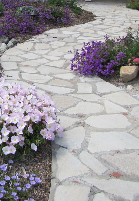 Walk Way of Recycled Concrete w/ Brick accents mediterranean landscape