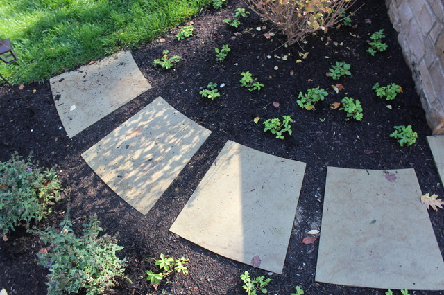 Design ideas for a transitional landscaping in Cleveland.