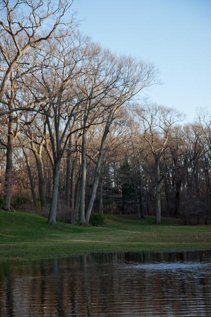 Warren Estate traditional-landscape