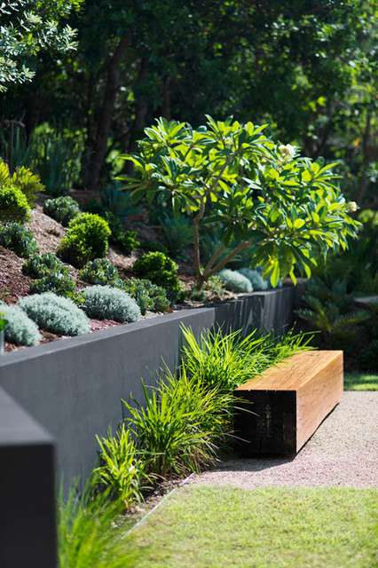 Wategoes byron bay contemporary landscape sydney for Garden design ideas gold coast