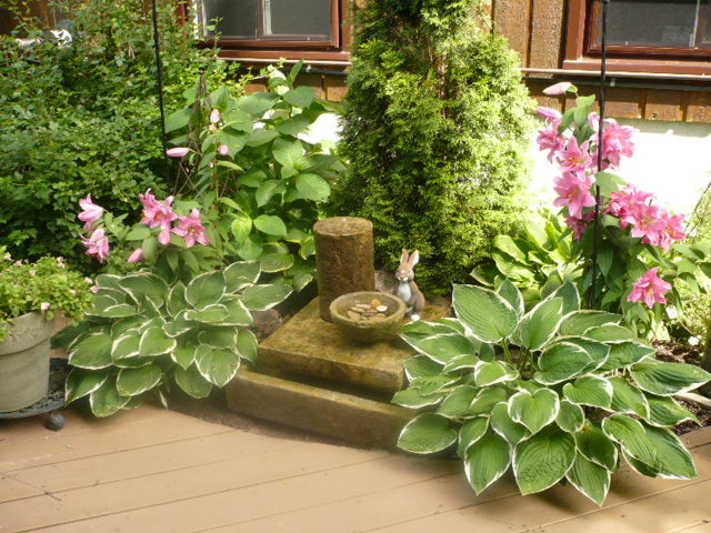 water feature/garden traditional landscape
