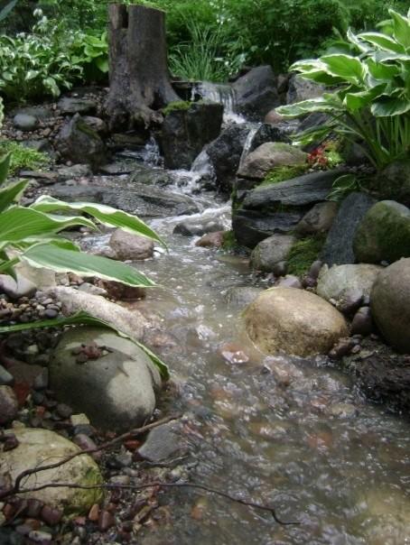 Water features tropical-landscape