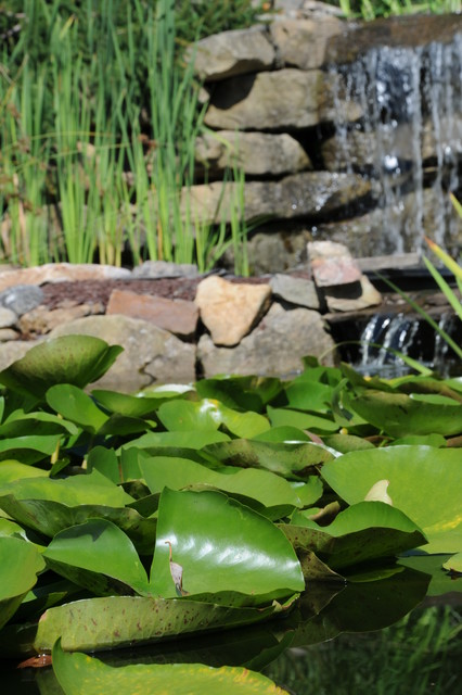 Water Features contemporary-landscape