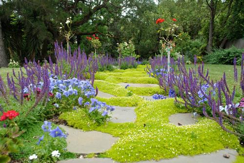 Eclectic Landscape by Belmont Landscape Architects & Landscape Designers Kristen Rudger Landscape Design