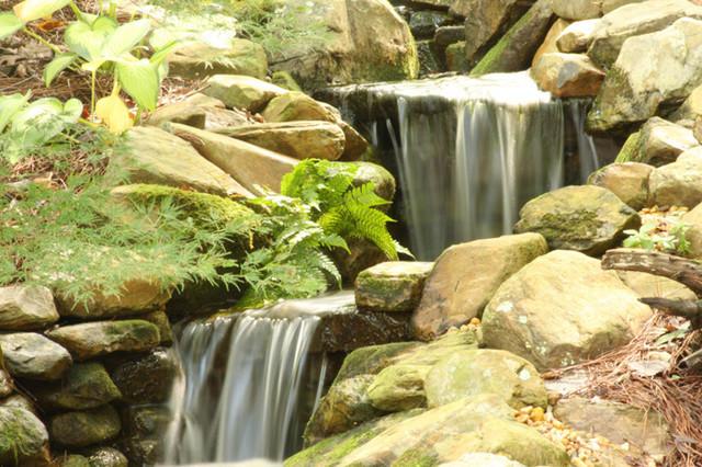 Water Features landscape