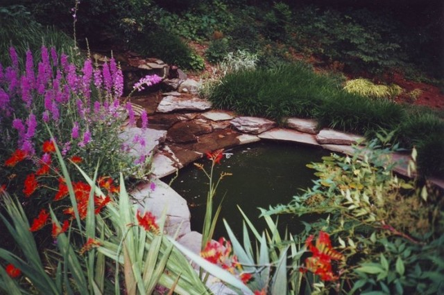 Water features/ponds/waterfalls/streams/spas traditional-landscape