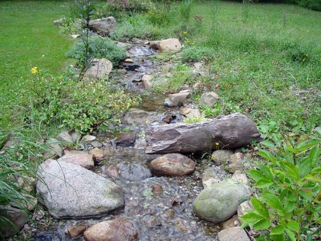 Backyard Ponds And Streams : Water featurespondswaterfallsstreamsspas  Traditional  Landscape
