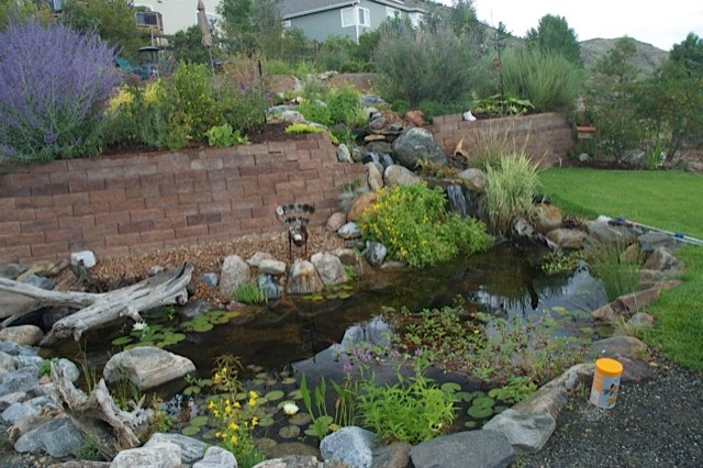 Water features through walls traditional landscape for Waterscape garden designs