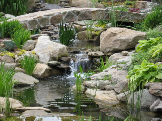 Water garden backyard waterfall and bridge by matthew Backyard pond ideas with waterfall