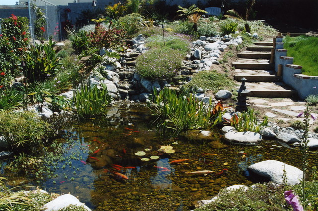 Water Garden contemporary-landscape
