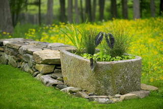 Water Garden in old stone trough