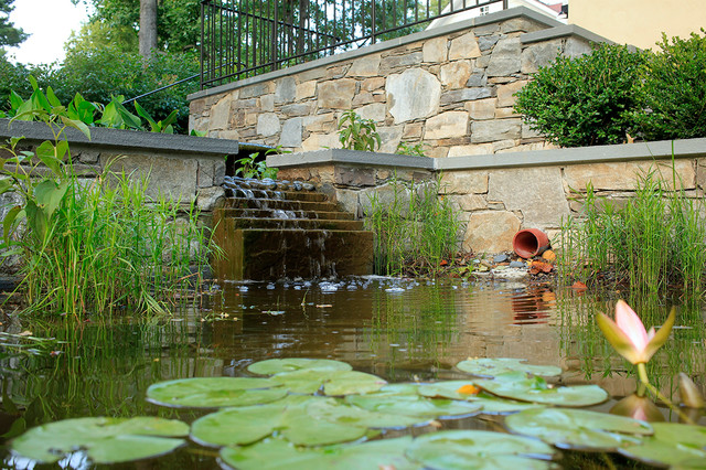 Water harvesting fish ponds contemporary landscape for Design of water harvesting pond