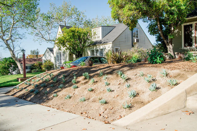 Water wise landscaping - Contemporary - Landscape - los ...