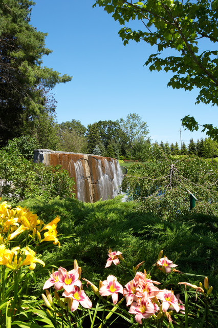 Waterfall and Water Features landscape