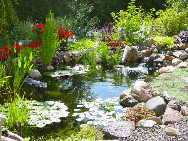 waterfall fish pond aquascape ecosystem water garden by acorn of