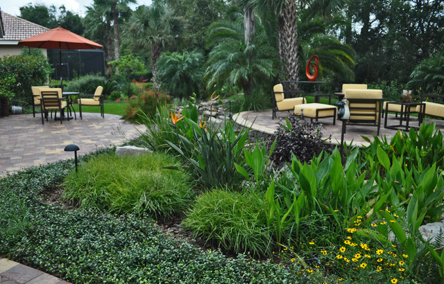 Waterfall Stream With Dry Creek - Tropical - Landscape - Tampa - By Schatz Landscape Design