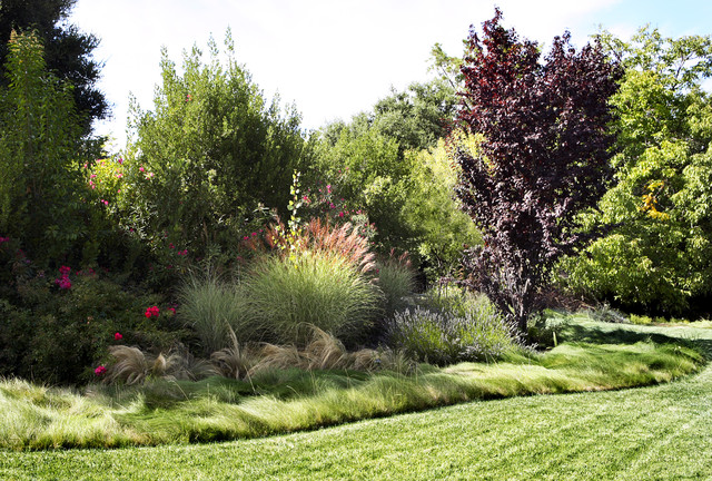 waterwise border Modern Landscape other metro by