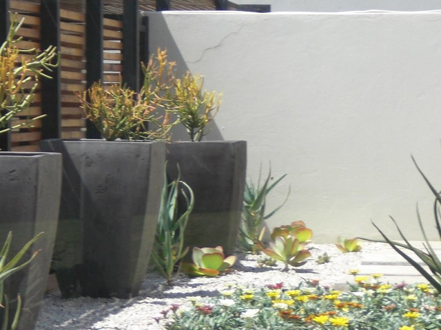Waterwise Garden Design Contemporary Landscape Other