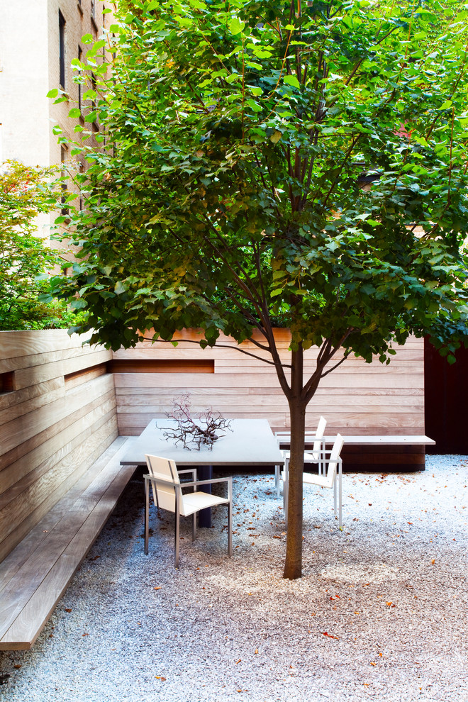 Design ideas for a small contemporary drought-tolerant and partial sun backyard gravel landscaping in New York for summer.