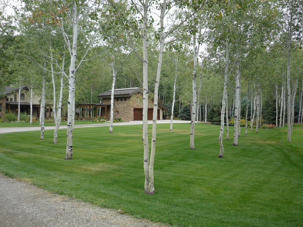 This is an example of a traditional landscaping in Boise.