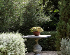 William Hefner Architecture Interiors & Landscape traditional-landscape