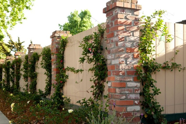 Willow Glen Design mediterranean-landscape