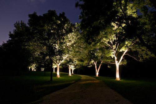 Photo by Wilson Lighting & Wilson Lighting azcodes.com