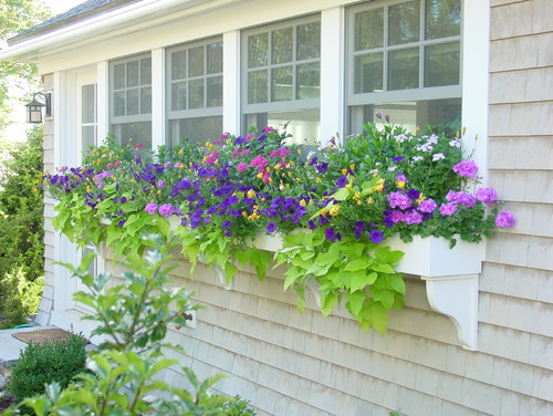 Cape Cod Outside Spaces traditional landscape