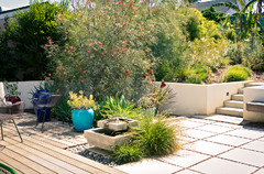 Patio of the Week: Casual Backyard Delights the Senses
