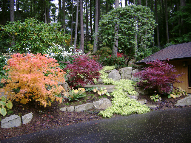Woodland Garden Traditional Landscape Seattle By