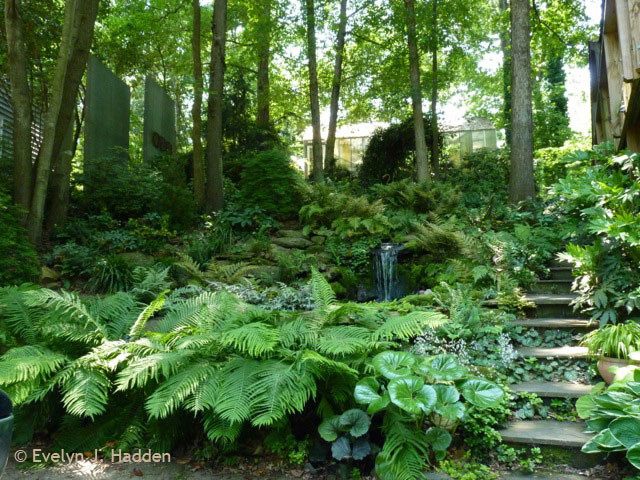 Woodland Garden Eclectic Landscape other metro by